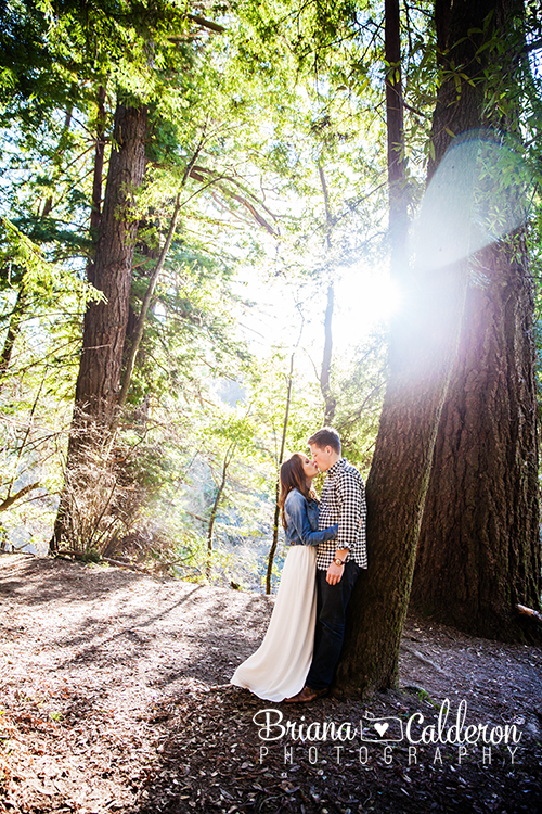 Engagement session at Henry Cowell Redwoods State Park in Felton, CA.  Photos by Briana Calderon Photography based in the San Francisco Bay Area.