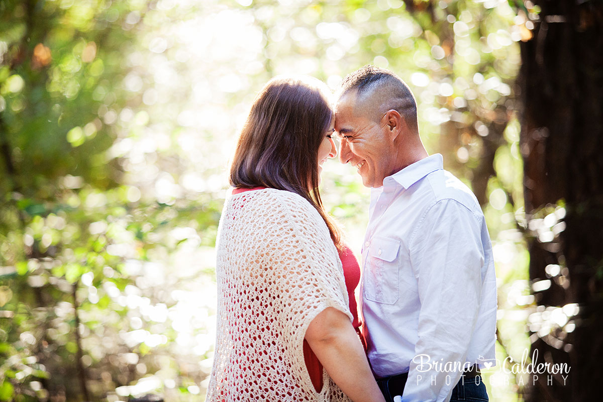 Engagement shoot at Henry Cowell Redwoods State Park in Felton, CA.  Photos by Briana Calderon Photography based in the San Francisco Bay Area in California.
