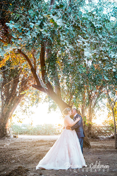 Wedding at De Luna Ranch In Brentwood, CA. Photos by Briana Calderon Photography based in the San Francisco Bay Area California.