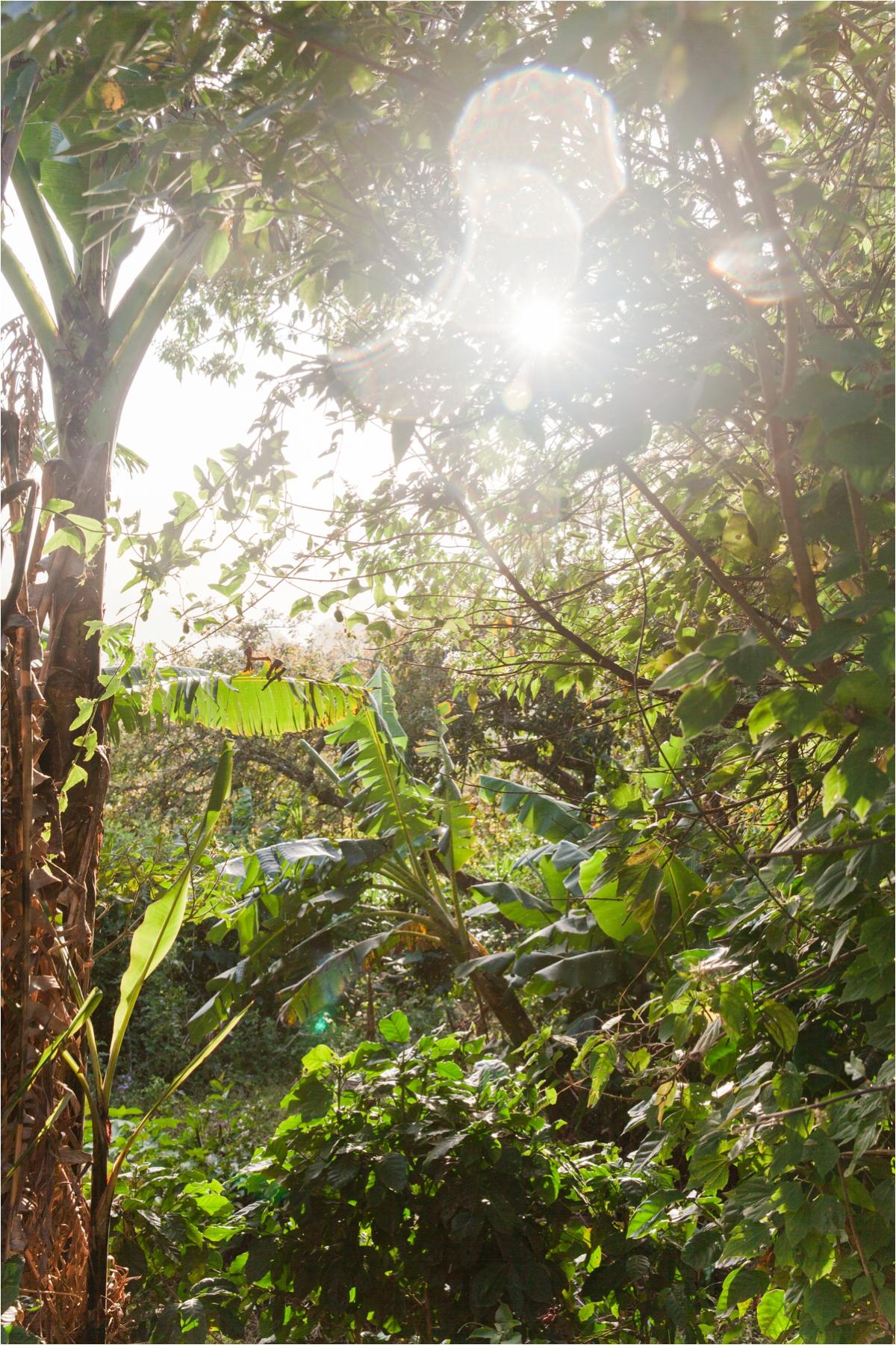 Costa-Rica-8001.jpg