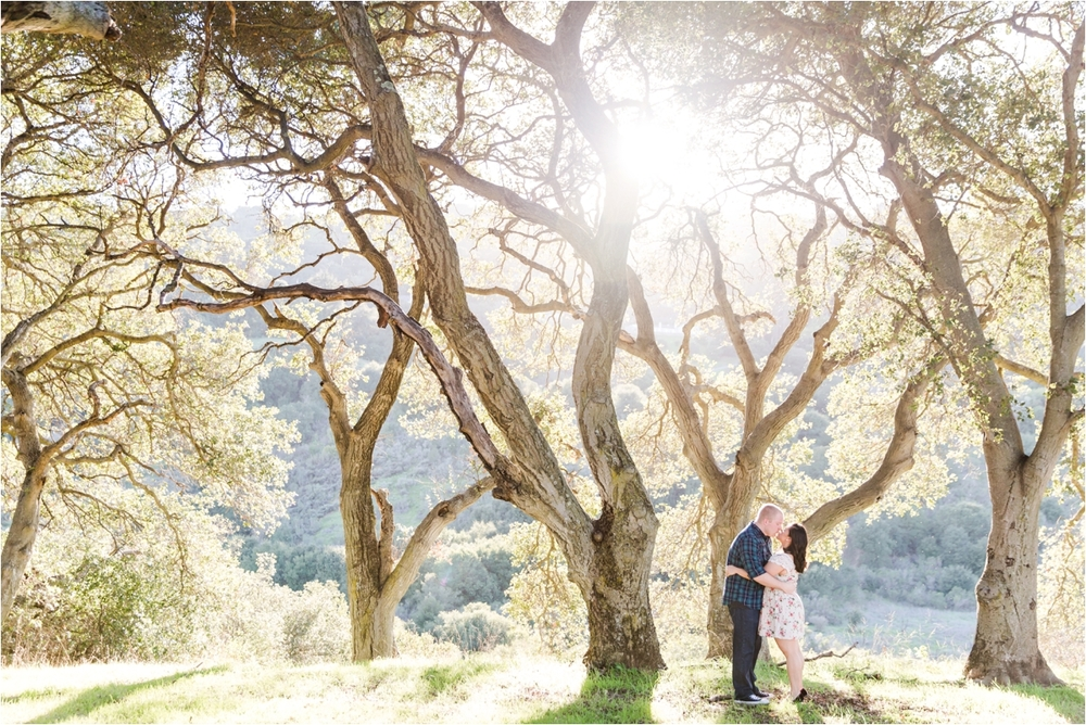 Engagement photo shoot at Piccetti Winery in Cupertino, CA. Pictures by Briana Calderon Photography based in the San Francisco Bay Area in California.