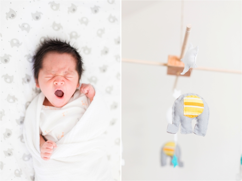 Newborn Pictures by Briana Calderon Photography_0206.jpg