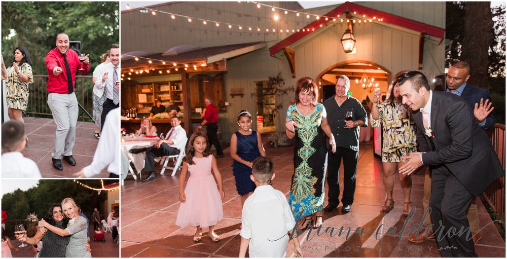 Bargetto Winery Wedding photos by Briana Calderon Photography_0898.jpg