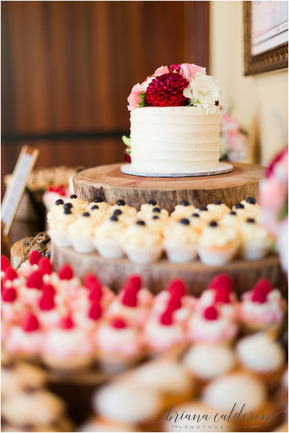 Bargetto Winery Wedding photos by Briana Calderon Photography_0951.jpg