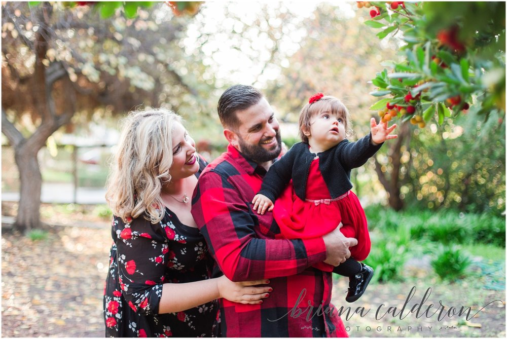 Family pictures at Shinn Historical Park in Fremont by Briana Calderon Photography_1205.jpg