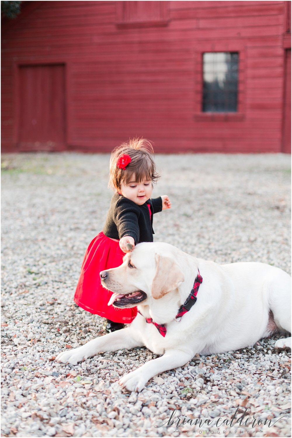 Family pictures at Shinn Historical Park in Fremont by Briana Calderon Photography_1213.jpg