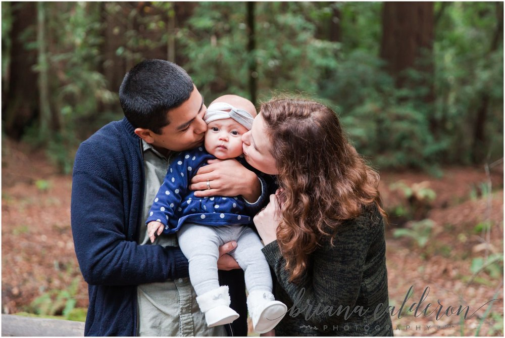 Engagement pictures at Henry Cowell Redwoods in Felton, CA by Briana Calderon Photography_1321.jpg