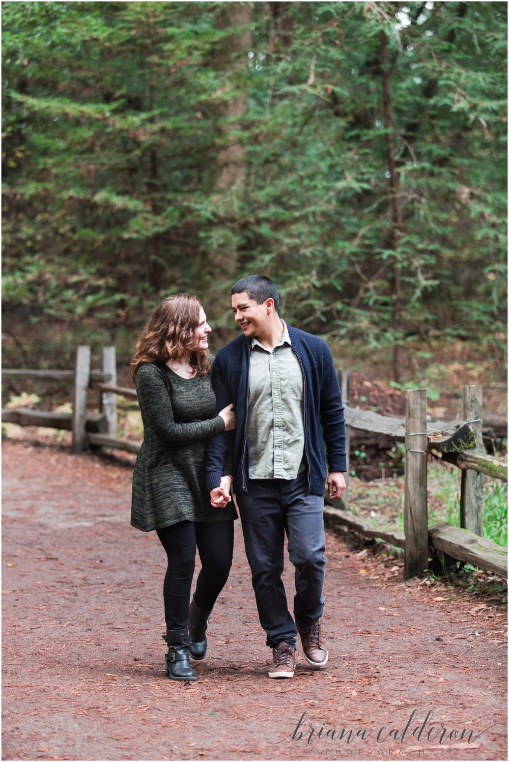 Engagement pictures at Henry Cowell Redwoods in Felton, CA by Briana Calderon Photography_1315.jpg