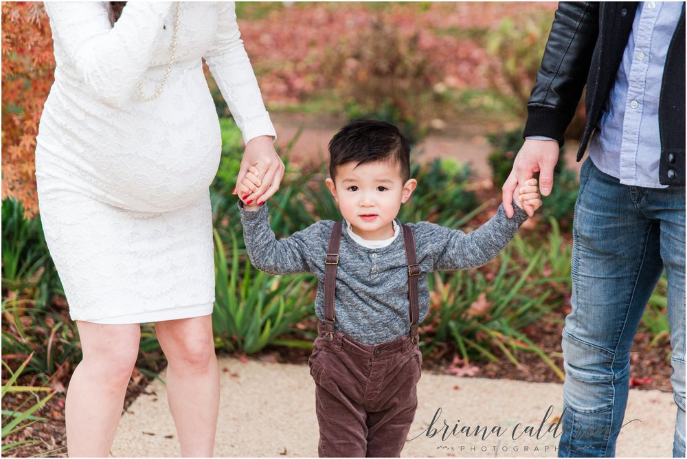 Bay Area maternity pictures by Briana Calderon Photography_1364.jpg