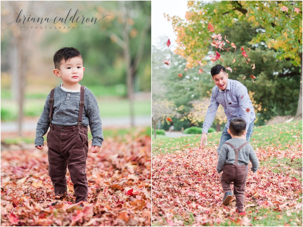 Bay Area maternity pictures by Briana Calderon Photography_1357.jpg