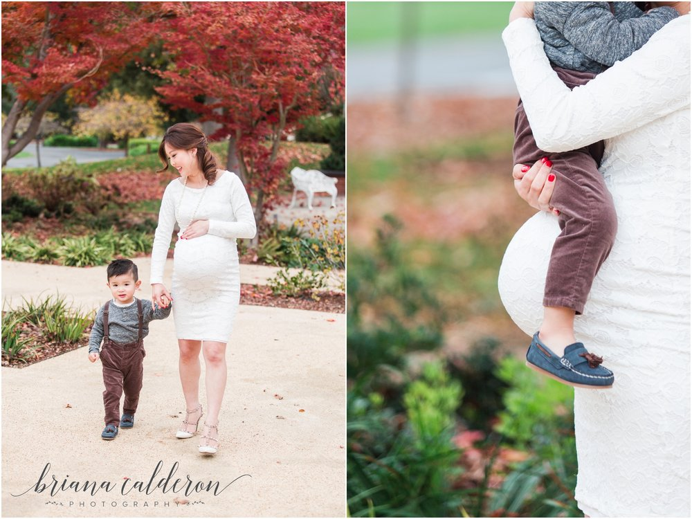 Bay Area maternity pictures by Briana Calderon Photography_1356.jpg