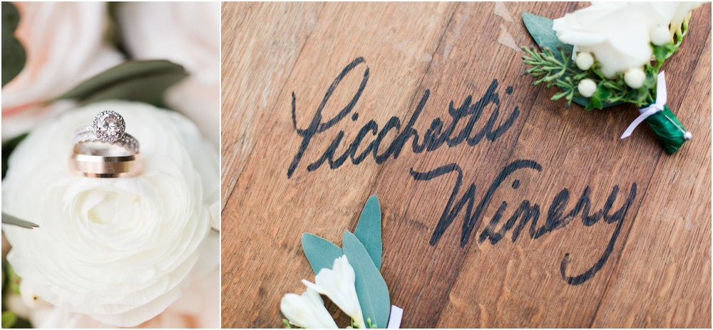 Picchetti Winery wedding pictures by Briana Calderon Photography_1999.jpg