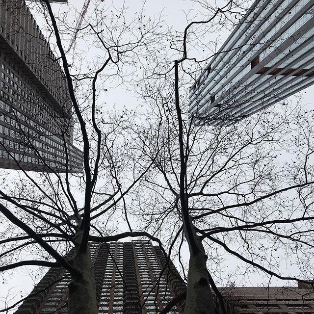 #skyscraper