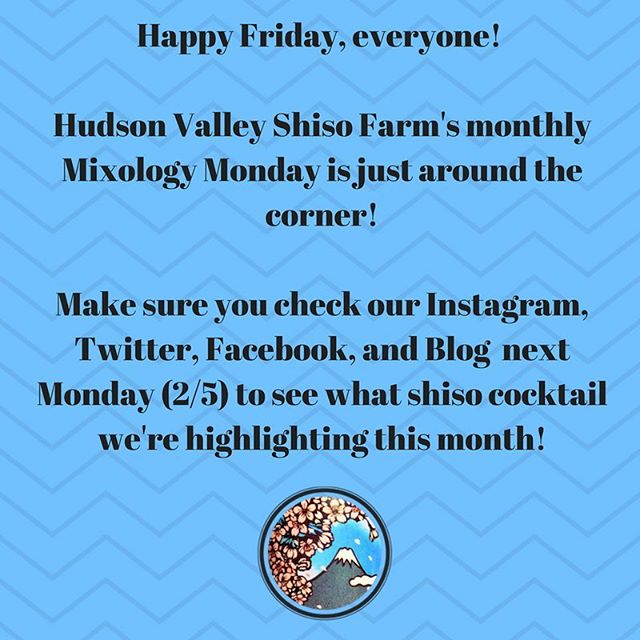 ‪🍷🥂🍸🍹🥃 #HVSFMixologyMonday #MixologyMonday #hudsonvalleyshisofarm #shiso #shisosyrupcocktails #organic #drinkNY #cocktails #HappyFriday #yum #redshiso #greenshiso #mixthosedrinks ‬