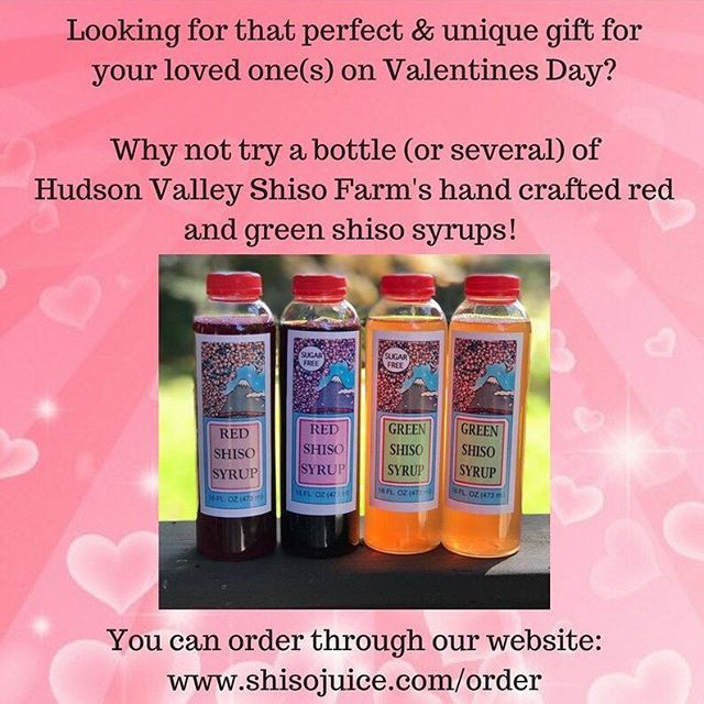 Get to know our products! For more information, please visit our website: shisojuice.com #hudsonvalleyshisofarm #shiso #handcrafted #redshisosyrup #greenshisosyrup #sugarfree #organic  #healthy #prettycolor #drinkNY #NYfarm #hudsonrivervalley #perfectgift #ValentinesDay