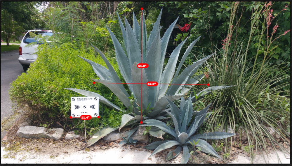 Smart Picture Technologies allows Local Plant Source clients to capture plant measurements using only a target card and smart phone.