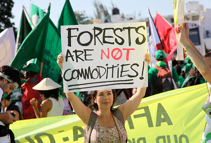 A photo from Millennial Magazine in an article about Millennial environmentalists protesting deforestation and the Trans-Amazonian Highway. http://millennialmagazine.com/the-roads-of-the-amazon-the-trans-amazonian-highway