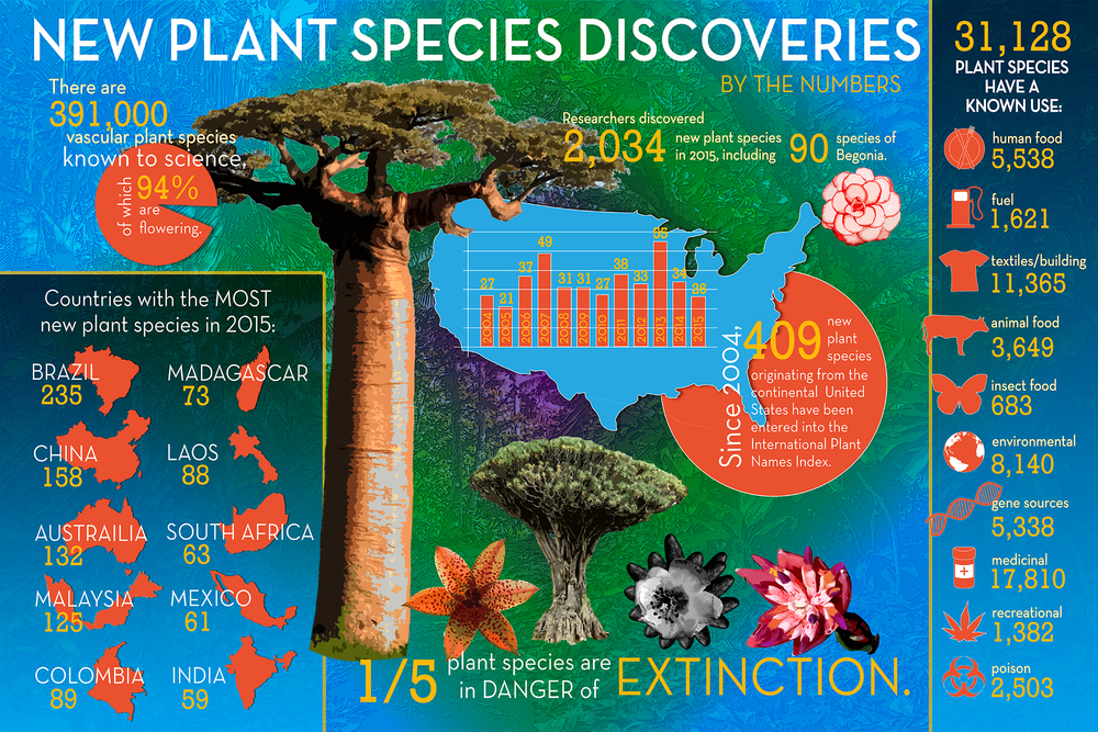 Infographic by Maria Sprow/ Local Plant Source. Information from The State of the World's Plants report by The Royal Botanic Gardens, Kew.