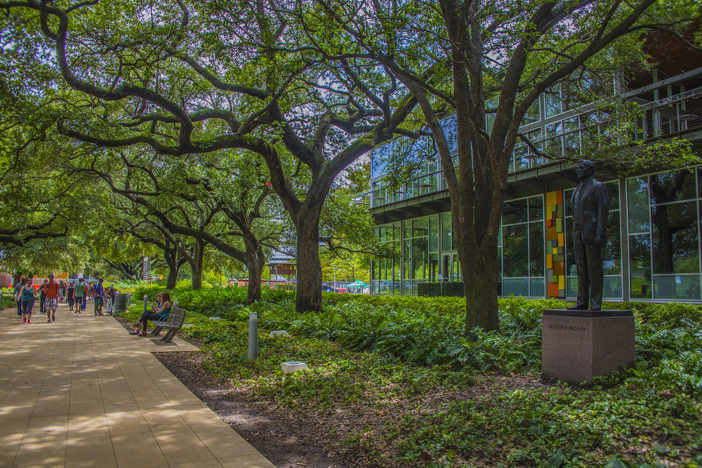 Residents enjoy the shade provided by Oak Allee, a cooridor of 100-year-old heritage oaks that connects the George R. Convention Center to the rest of downtown. Photo by Maria Sprow.