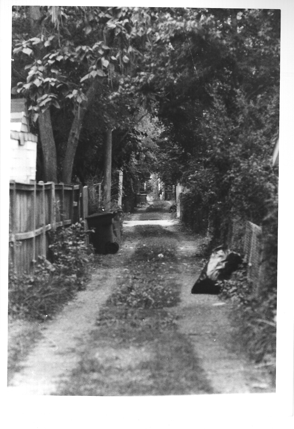 Alley - 2009