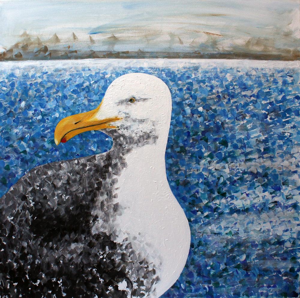 Seagull - 2018