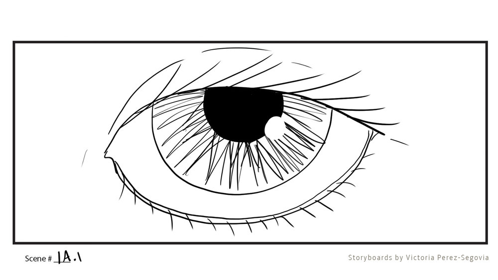 Storyboards - If you're looking for a story board artist for your screen project, view this portfolio and contact me for prices.