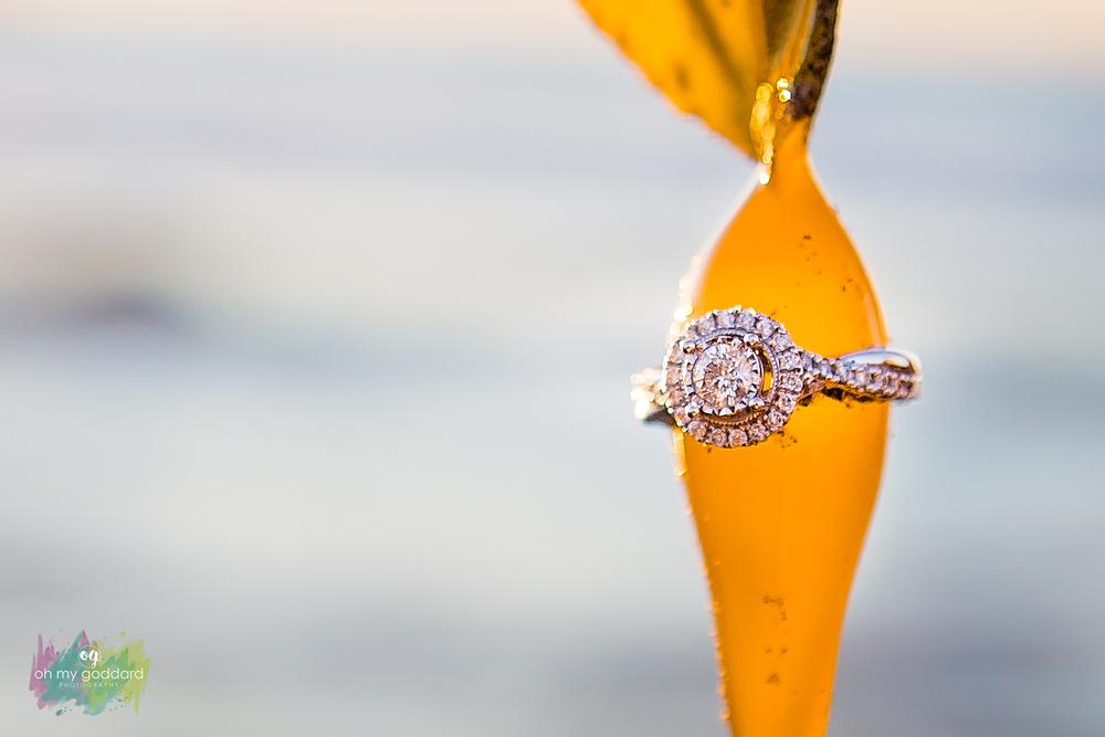 la jolla beach engagement ring.jpg