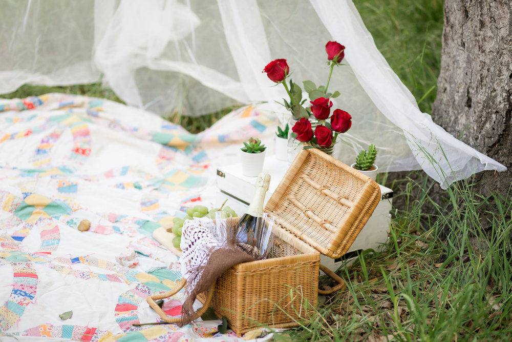 Picnic Engagement Session -  Oh My Goddard Photography-6.jpg
