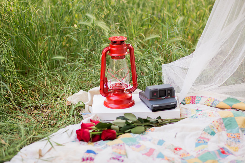 Picnic Engagement Session -  Oh My Goddard Photography-7.jpg