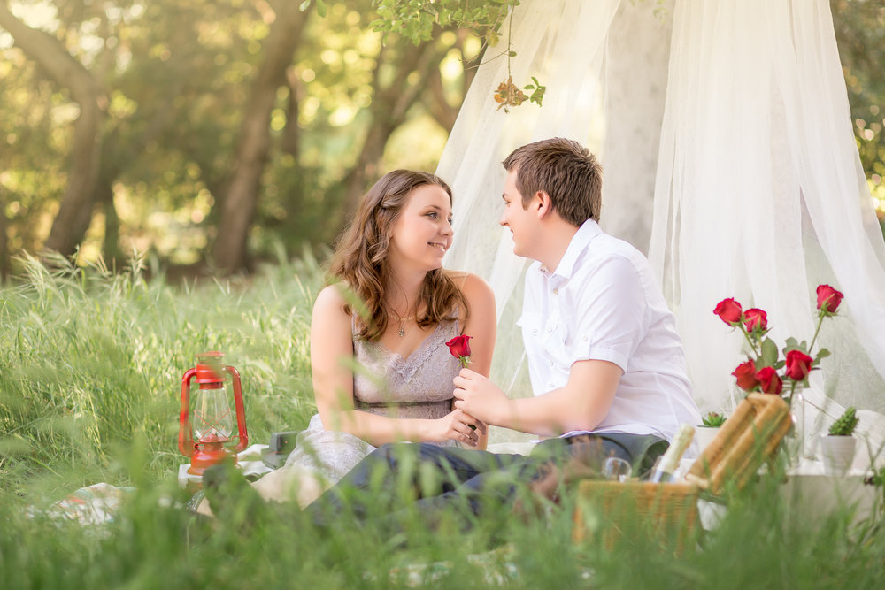 Picnic Engagement Session -  Oh My Goddard Photography-9.jpg