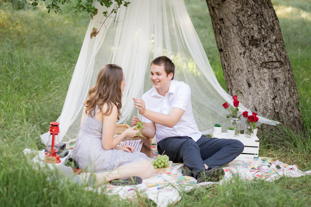 Picnic Engagement Session -  Oh My Goddard Photography-18.jpg