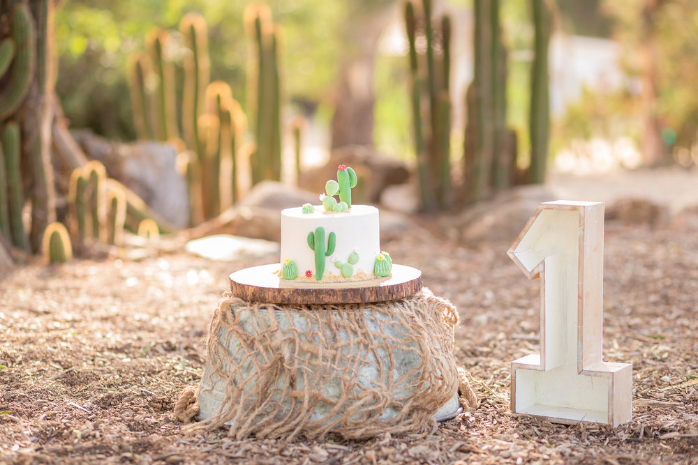 Cactus Cowboy Southwestern Cake Smash- Oh My Goddard Photography - San Diego Oceanside Cake Smash Photographer-10.jpg