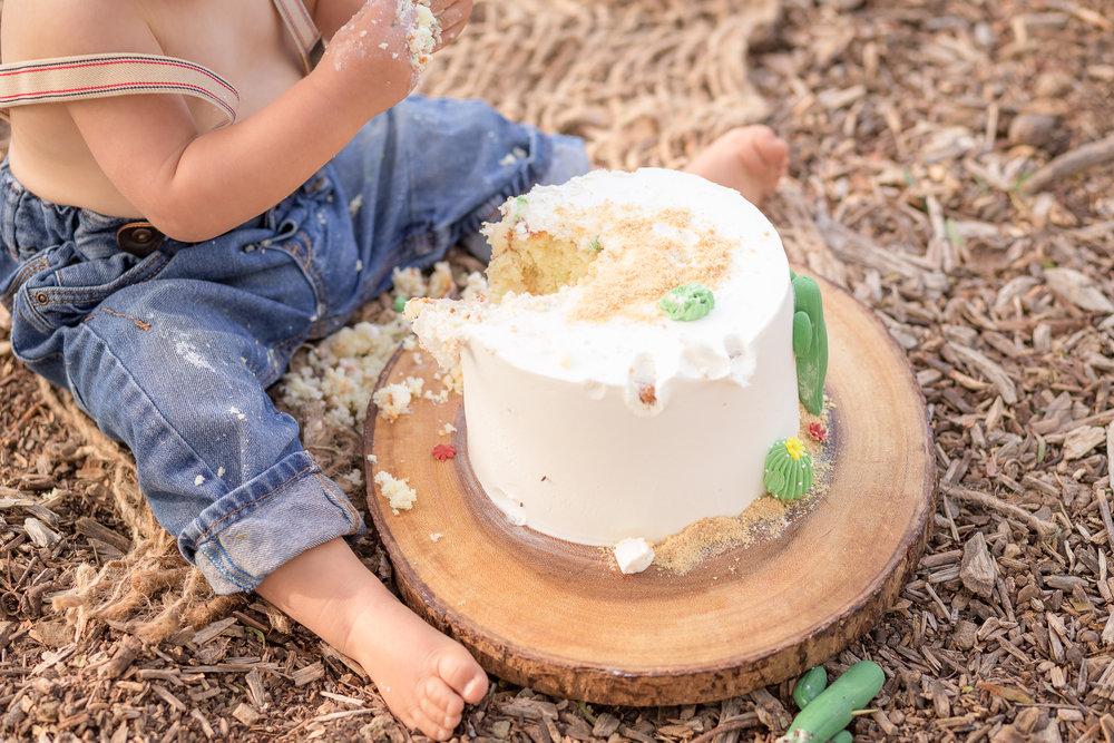 Cactus Cowboy Southwestern Cake Smash- Oh My Goddard Photography - San Diego Oceanside Cake Smash Photographer-21.jpg