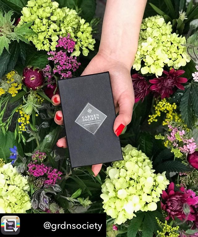 Find a fresh perspective in every box #craftcannabis #findyourgrdn @grdnsociety