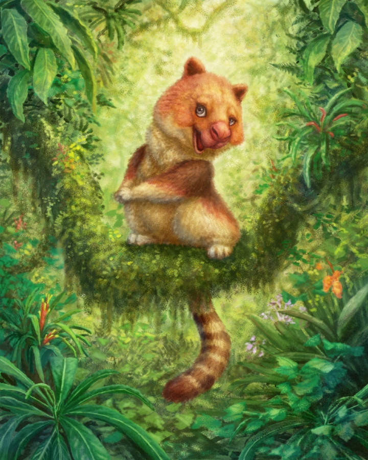 Get Letter 1 FREE - A grieving child deserves the companionship of loving and kind characters like Melodee Roo The Tree Kangaroo and her friends, the Wantoks.Start your FREE Trial membership today!
