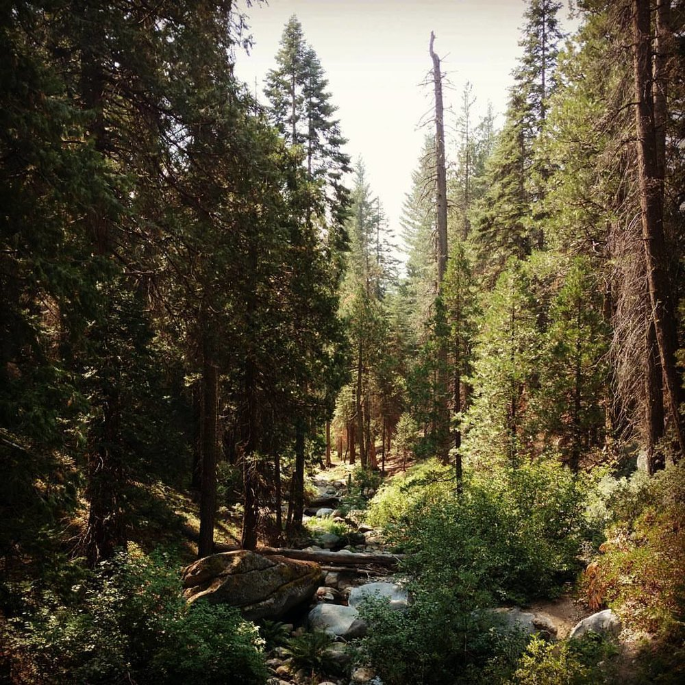 Taking the scenic route from Camp Gold to Camp Blue