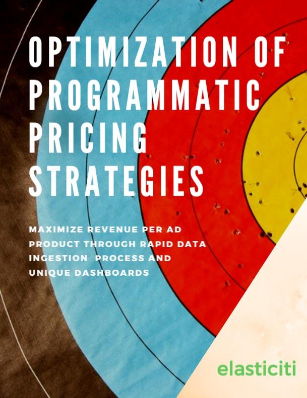 Optimization of Programmatic Pricing Strategies