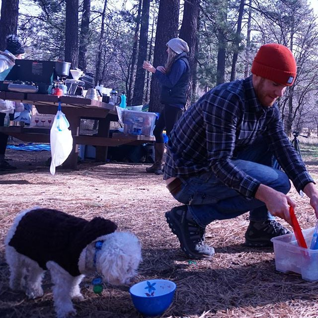 Who's turn is it to do the dishes ?  #camping #campingwithdogs #campsite @daveonbike #sprocketsantos