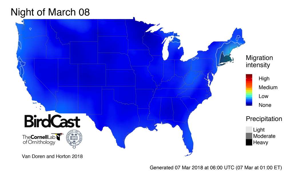 forecast_with_precip_2018-03-08_wgs84.png