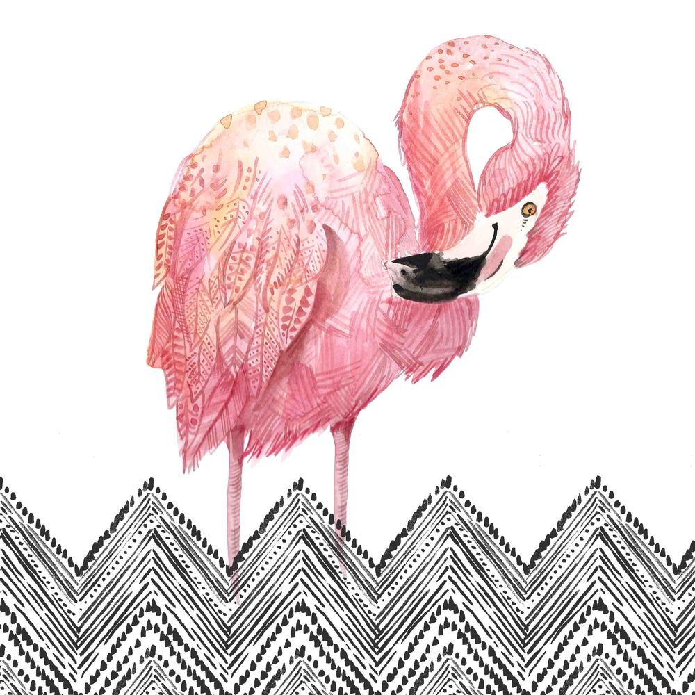 1_Flamingo.jpg