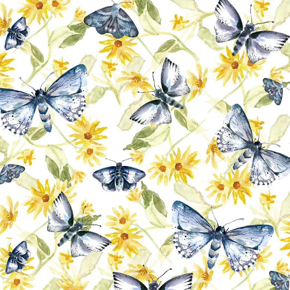 5_moth.jpg