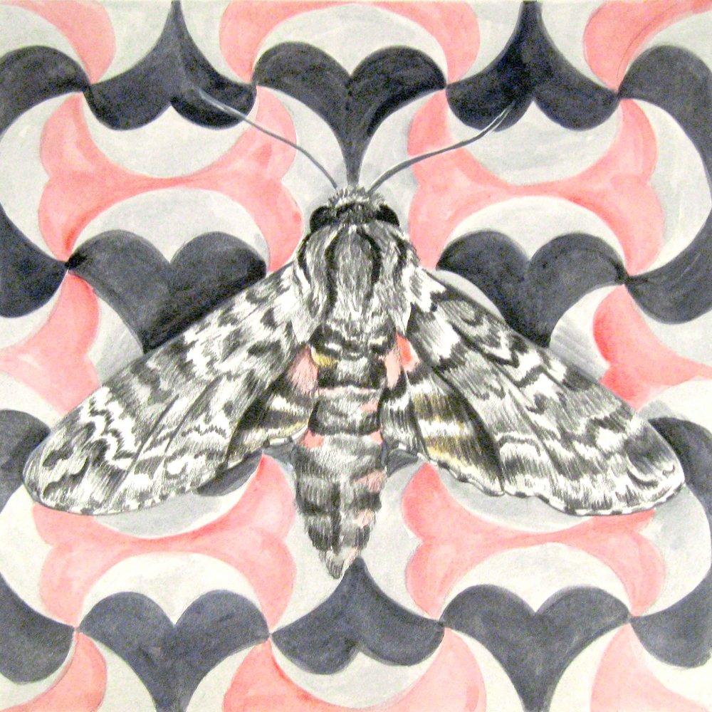 10_PP_SEG_moth.jpg