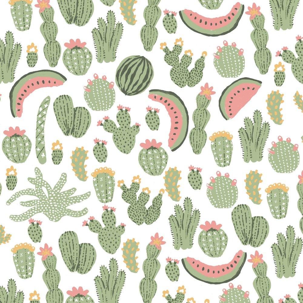08b_PP_SEG_cactus.jpg
