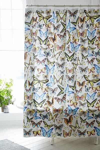 SHW_Butterflies.jpg