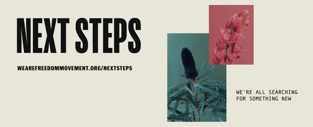 Next-Steps_Web-banner.jpg