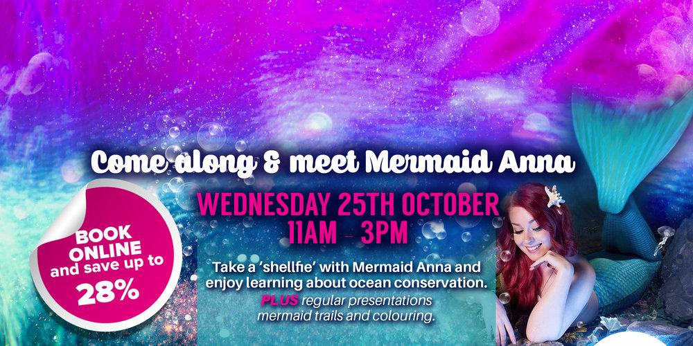 mermaid-slide.jpg