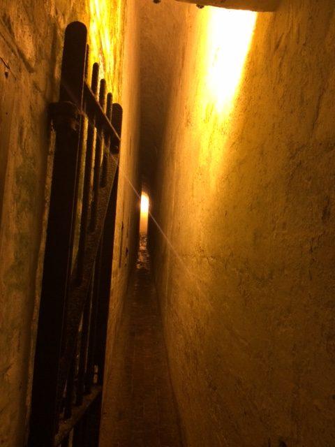 Tunnel-Nikki-pic-e1502794880637.jpg