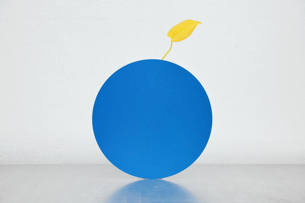 ATO.D.O_AColorFace_2_Round_Blue_Solo.jpg