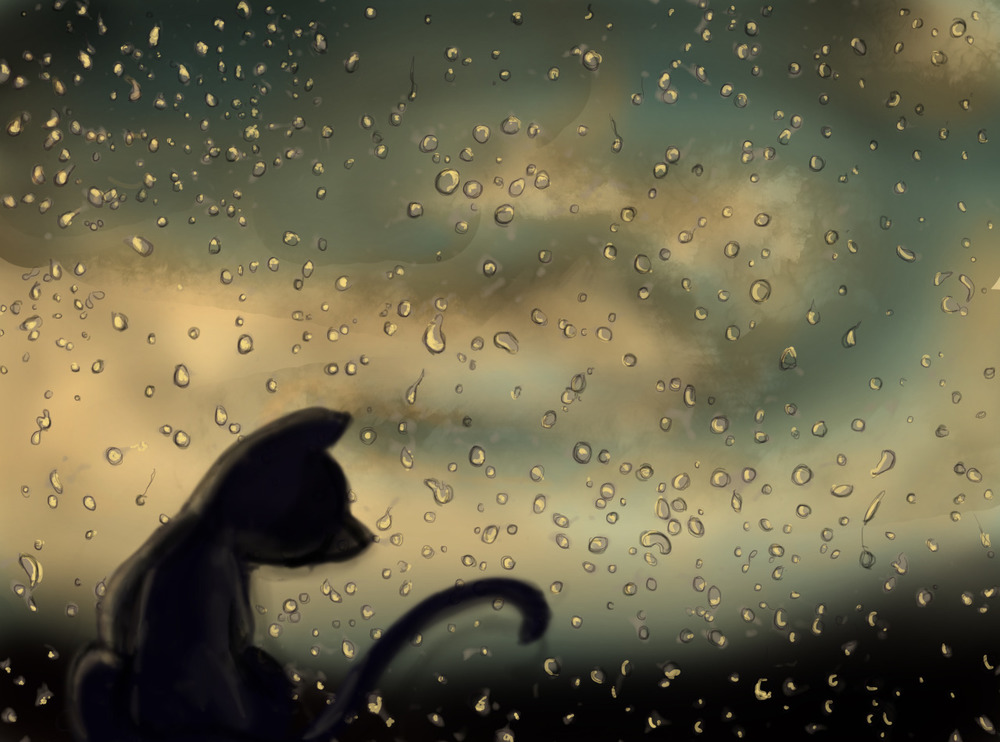 Them rainy days.