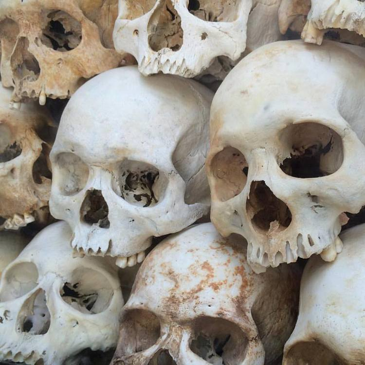 Skulls of victims in Cheung Ek Killing Field.